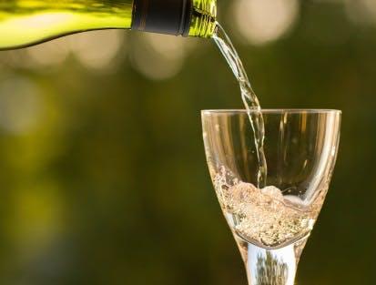 Weißweine in hocher Qualität bei Hawesko kaufen