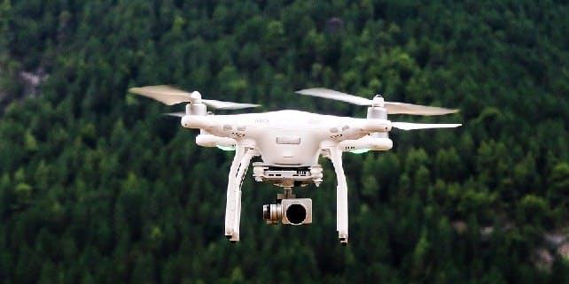 Drohne im Wald