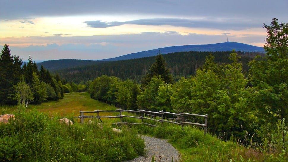 Wandern im Harz: der Brocken im Hintergrund