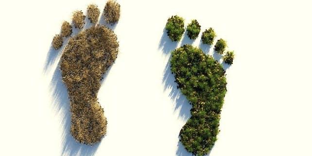 Ökologischer Fußbadruck