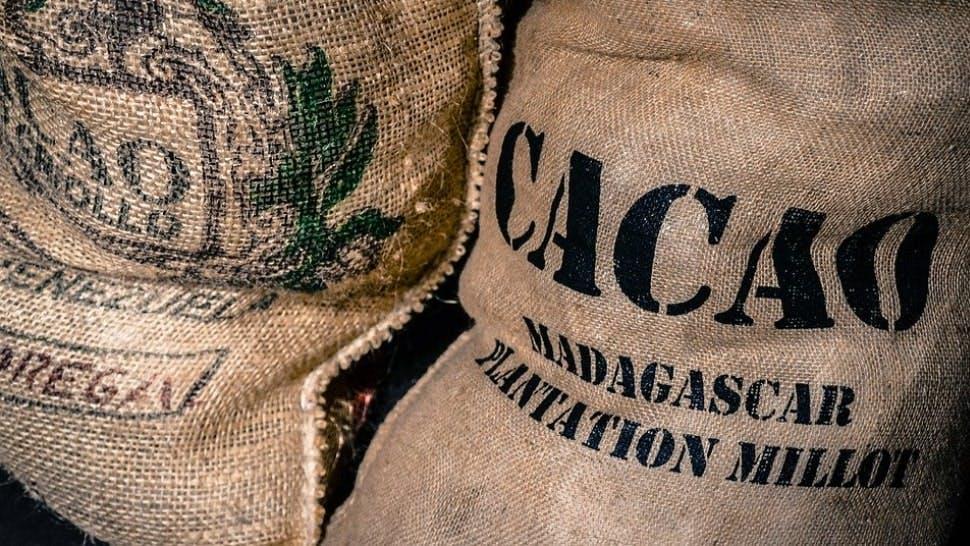 Sack voll Kakaobohnen aus Madagaskar