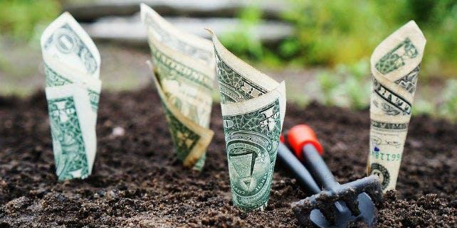 Nachhaltigkeit bei ethischen Banken