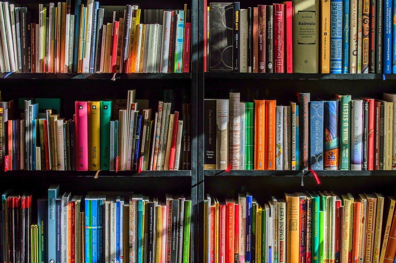 Bücherregal mit Büchern
