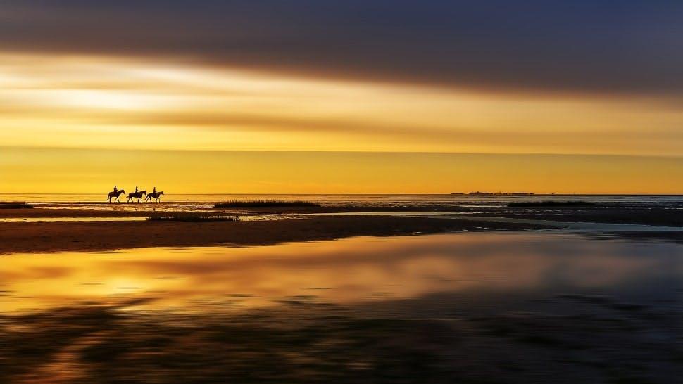 3 Reiter reiten bei Sonnenuntergang über einen Strand in Deutschland