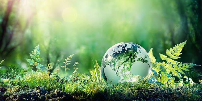 Shopping und Nachhaltigkeit muss sich nicht ausschließen.
