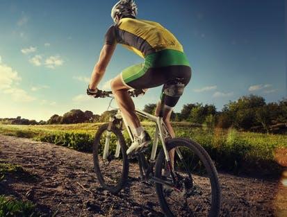 Bei Alternate finden Sie die neusten E-Bikes