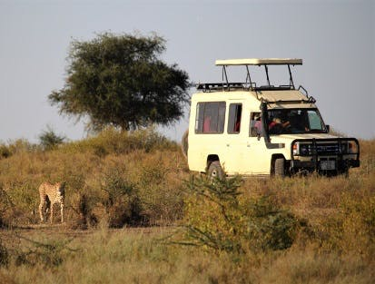 Afrika Safari Jeep Tierpflege Abenteuer