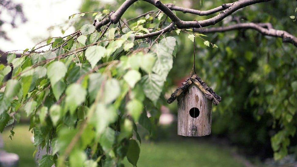 Simple Gartenideen Vogelhäuschen