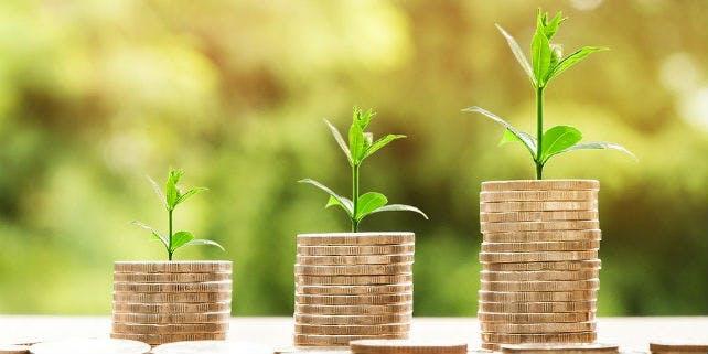 Ökobanken und ihr Konzept: Das steckt hinter der grünen Geldanlage