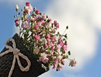 Blumen zum Geburtstag und Blumen zum keinen Grund - bei Fleurop finden Sie alles