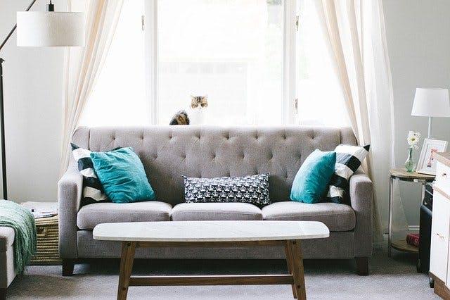 Couch in Wohnzimmer mit Lampen, Kissen und Katze vor Fenster.